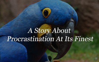 A Story About Procrastination At Its Finest